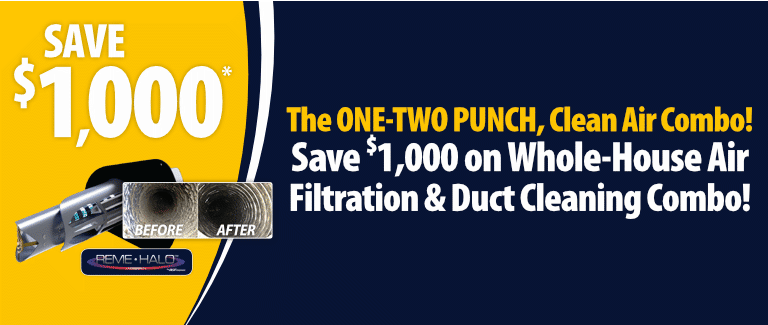 The One-Two Punch Clean Air Combo!